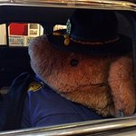 Safety Bear
