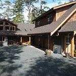 Black Bear Guesthouse Foto