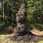 """""""Monkey"""" lava tree"""