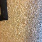 room #206 needs painting