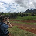 Photo de Kauai Photo Tours