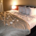 Rose petal turndown services as part of our hotel package.