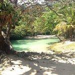 Frenchman's Cove Foto
