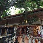 Marari Nest Beach Homestay Photo