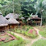 Photo de Nuts Huts Resort