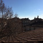 Avignon Rooftops from Terrace