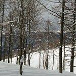 Photo of Hakuba Iwatake Ski Resort/Lily Farm & Mountain View