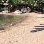 Der Strand ist alles andere als schön. Das Wasser ist schmutzig der Sand braun und grobkörnig, n