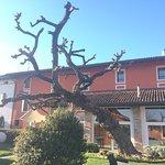 Hotel Antico Borgo Torricella Foto