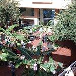 Photo de Regency Hotel and Spa