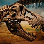 Foto de Sirindhorn Museum and Phu Kum Khao Dinosaur Excavation Site