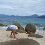 Picking seashells on Fitzroy Island Day Trip