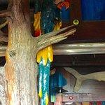 Decorations at NSB Seashack