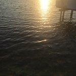 Photo of Rainbow Bend Fishing Resort