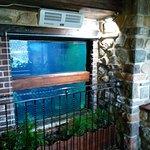 Watermill Lodge