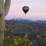 Fleur de Tucson Hot Air Balloon Rides Foto