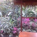 Photo of Hotel Shawandha Lodge