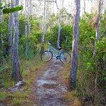 Apoxee Trail