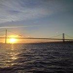 Foto di Marlin Boat Tours