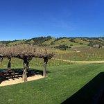 Navarro Vineyards