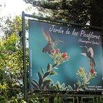 Jardín de los Picaflores