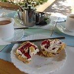 Excellent English cream tea with fresh fruit scones