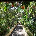 Lovely tranquil gardens