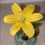 Fresh flower & vase in the room