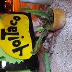 Photo of Yo Taco