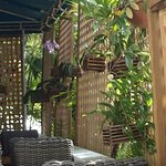 Photo de Azur Restaurant