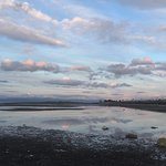 Sunset during the herring spawn, Parksville Community Park and Skate Park , Parksville, BC