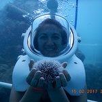 Photo taken by Sea Trek St. Maarten staff