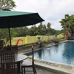 Pool facing the Paddy Field