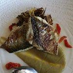 Pesce Serra, su crema di carciofi