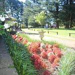 Front lawns with magnificent gardens