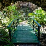 Belize Botanical Garden