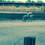 lessons and rides for every skill level