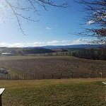 Views at Bluestone Vineyard