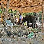 Photo de Tri Trang Beach
