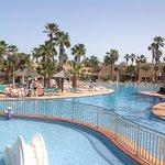 Photo of Oasis Duna Hotel