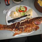 Whole Red Snapper (huachinago), Excellent and Clean!