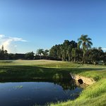 Pola golfowe