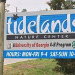 Foto de Tidelands Nature Center