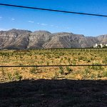 Stellenbosch mountain through the back fence