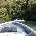 Our riverboat ride on the Panama Canal to Monkey Island