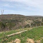 Photo of Villaggio Agrituristico Campanio