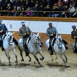 ensemble de 12 chevaux montés.