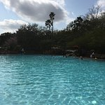 Disney's Animal Kingdom Lodge Foto