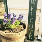A warm welcome greets our guests.