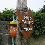 Foto di Wild Pacific Trail